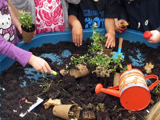 Children playing with plants and soil